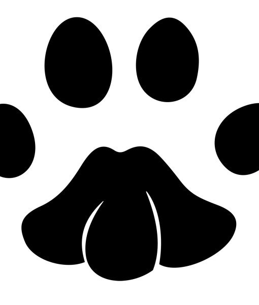 animal paw print wall sticker world of wall stickers set of 25 paw print stickers wall stickers wall decals