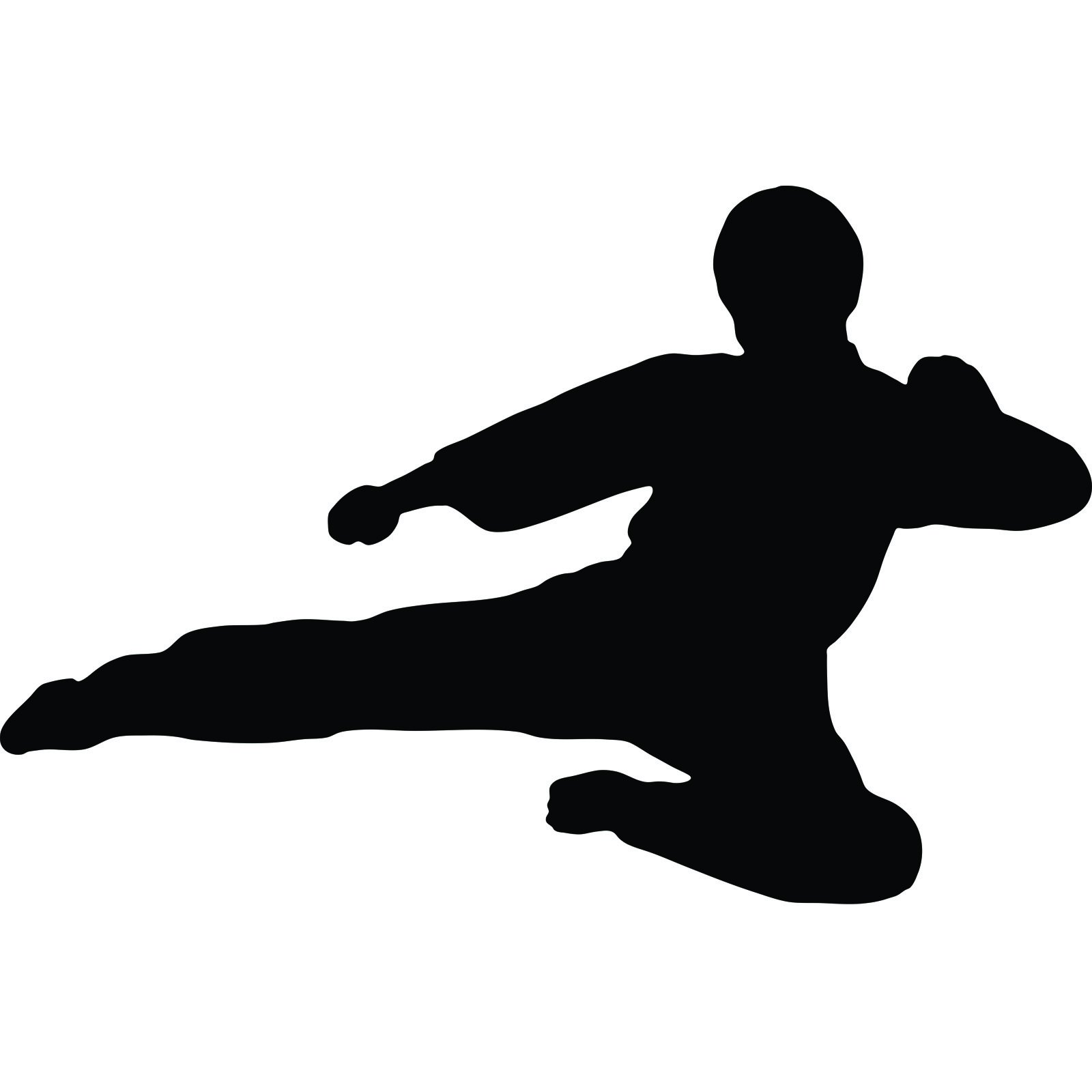 Mirrored Wall Art Stickers Martial Arts Flying Kick V2 Karate Kung Fu Wall Sticker
