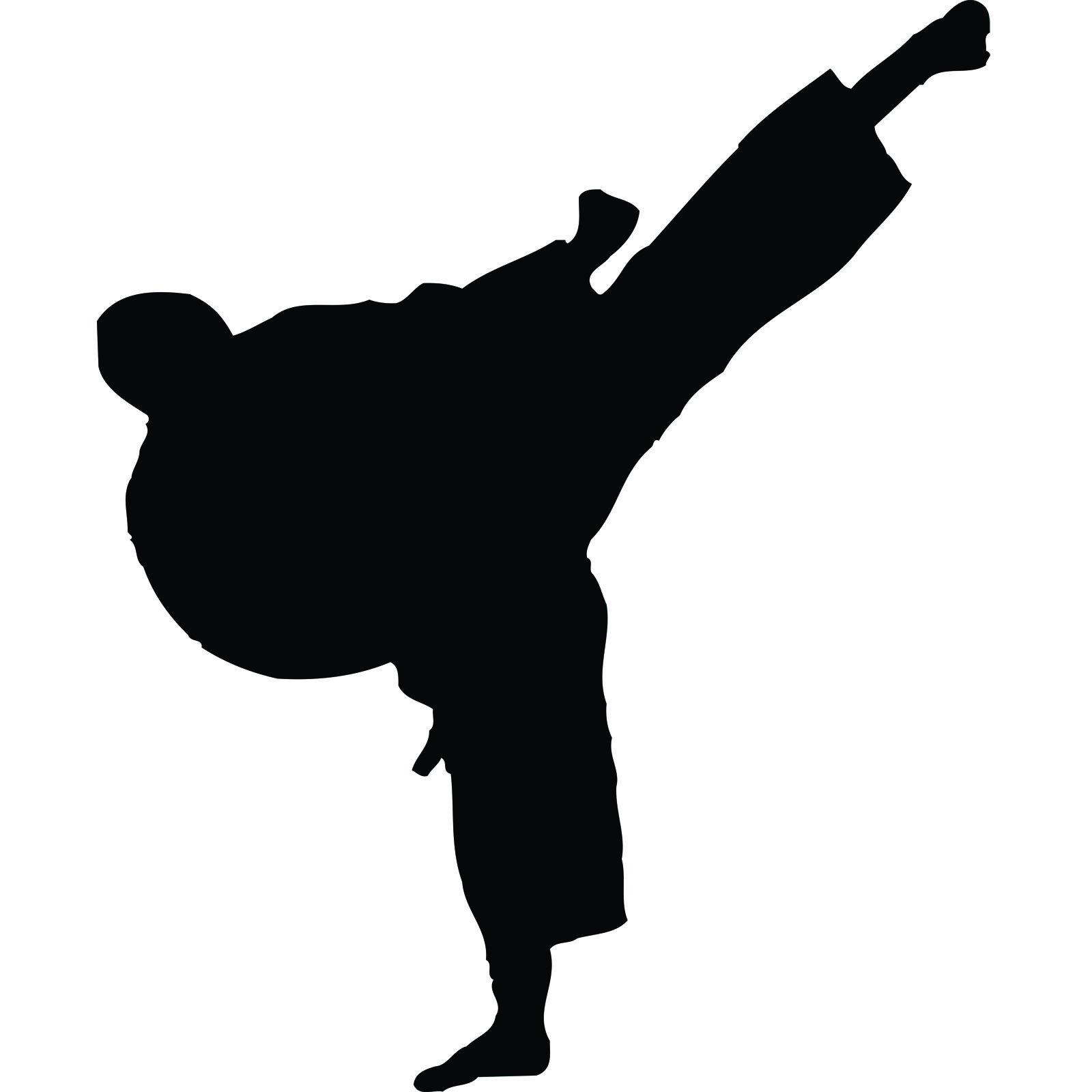 Mirrored Wall Art Stickers Martial Arts High Kick Karate Kung Fu Wall Sticker World